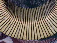 Пример намотки первичной обмотки на тороидальный трансформатор
